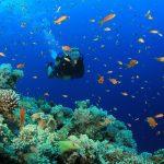 scuba_diving-puerto-rico-hero